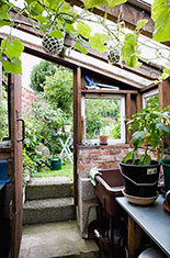 Small conservatory interior.